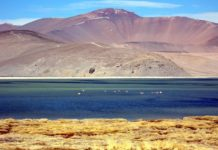 Laguna del Negro Francisco, Atacama.