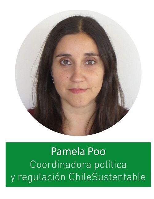 pamela-poo-compressor