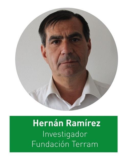 Hernán Ramírez1