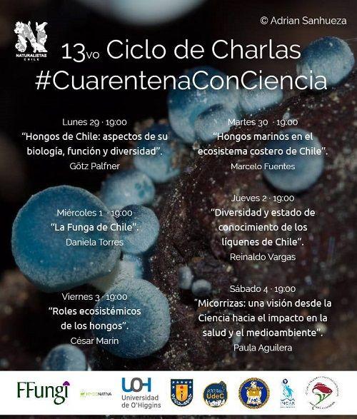 """13º ciclo de """"Cuarentena con Ciencia"""""""